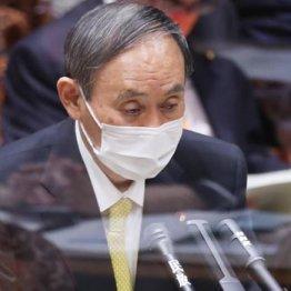 子ども庁も週休3日も 菅内閣は思いつきの場当たり政治