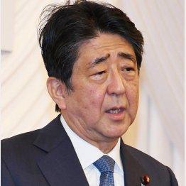 鶴の一声で(安倍前首相)/(C)日刊ゲンダイ
