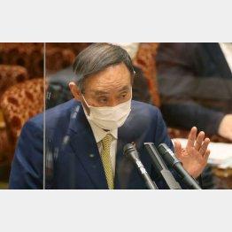 メンツ優先、4月開始の既成事実づくり(菅首相)/(C)日刊ゲンダイ