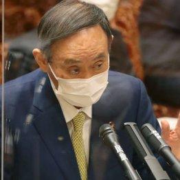 菅首相のメンツがワクチン最優先の医療従事者を危険に晒す