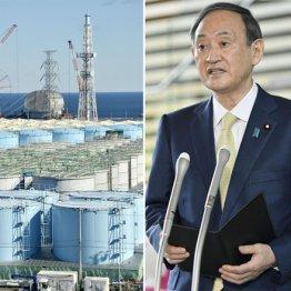 汚染水放出ですべてがわかった 菅首相目玉政策の胡散臭さ