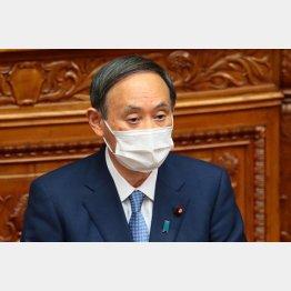参院本会議で答弁する菅義偉首相(C)日刊ゲンダイ