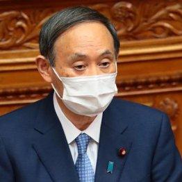 菅首相「大きなうねりではない」頭の中はコロナより外遊