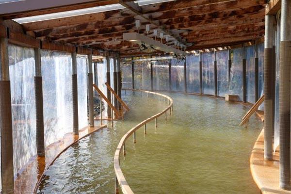 クアパーク長湯の歩行浴(提供写真)