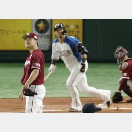 中田に一発を浴び、打球を追う田中将大(C)共同通信社