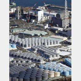 東京電力福島第1原発の敷地内に並ぶ処理水を保管するタンク(C)共同通信社