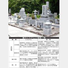 墓のシステムと価格一覧(写真はイメージ)/(C)日刊ゲンダイ