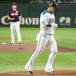 田中将大に投げ勝った日ハム上沢の名前がどこにもないぞ!