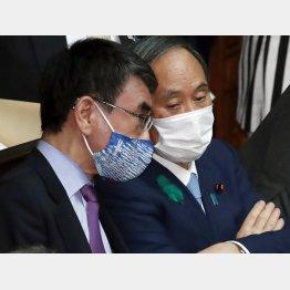 外交力の無さが露呈(菅首相と河野ワクチン担当相=左)/(C)日刊ゲンダイ
