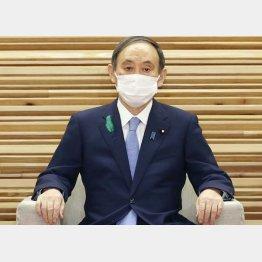 検査なし病床なしワクチンなし(菅首相)/(C)共同通信社