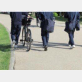 通学途中に事故が起きる場合も(写真はイメージ)