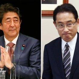 自民敗色濃厚の参院広島再選挙に安倍晋三がテコ入れする訳