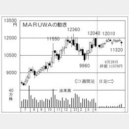「MARUWA」の株価チャート(C)日刊ゲンダイ