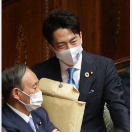 もはや神奈川の恥(C)日刊ゲンダイ