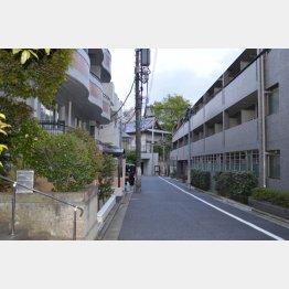 写真② 閑静な住宅街のど真ん中で濡れ場を撮影(C)日刊ゲンダイ