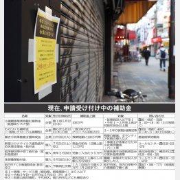 現在、申請受付中の補助金(C)日刊ゲンダイ