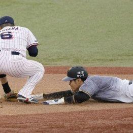 新人2冠期待の阪神佐藤輝に立ちふさがる「死球禍のカベ」