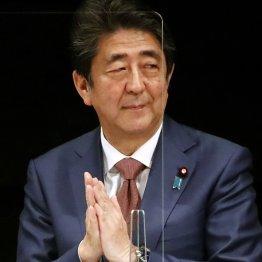 """安倍晋三がなぜ?「菅首相が継続すべき」発言""""真の狙い"""""""