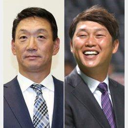 金本知憲氏(左)と新井貴浩氏(C)日刊ゲンダイ