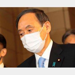 政治判断が求められている(C)日刊ゲンダイ