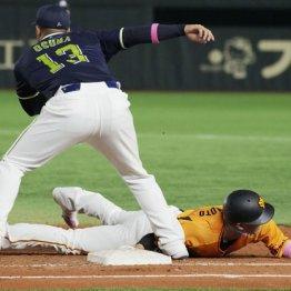 今度は巨人・坂本が骨折…頻発する帰塁故障は防げないのか