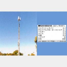「基地局」は7、8メートルの鉄塔の先端にアンテナ(提供写真)