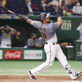 投手陣苦しい巨人 本当は阪神アルカンタラに垂涎だった?