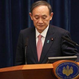 菅内閣支持率43%に急落、五輪「中止」56%=産経新聞調査