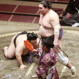 白鵬窮地…照ノ富士と貴景勝に7月場所後横綱同時昇進の目