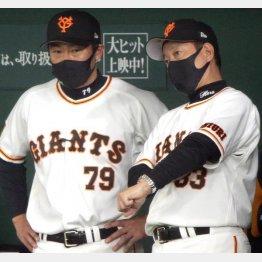 ベンチで原監督(右)の話を聞く相川コーチ(C)日刊ゲンダイ