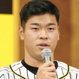 阪神・佐藤輝は交流戦が試金石 好打者が調子急落のデータ
