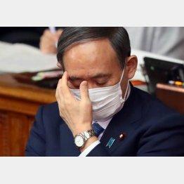 五輪開催計画はすでに半壊状態、それでも突っ切るか(菅首相)/(C)日刊ゲンダイ