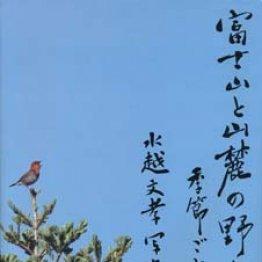 「富士山と山麓の野鳥 季節ごとに」水越文孝著