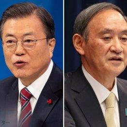 コロナ禍でも内閣支持率30%…日本の我慢強さに驚く韓国人