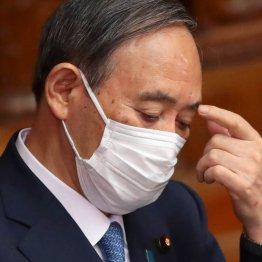 菅内閣支持率40%、五輪「通常通り」1%=日経・テレ東調査