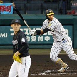 パ投手の150キロ超の剛球を弾き返す新生・阪神打線に感動