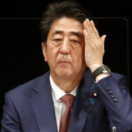 「#安倍のせい」の当然 菅原議員辞職もワクチン遅れも元凶