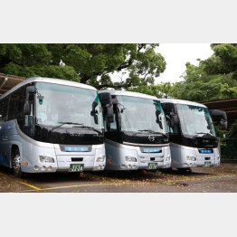 駐車場に止まったままのバス(C)日刊ゲンダイ
