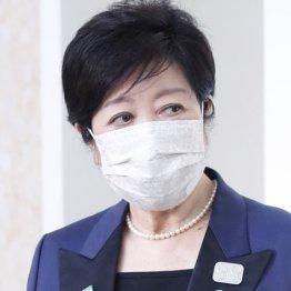 太陽光詐欺事件 菅官邸が糸を引く「小池知事潰し」の怨念