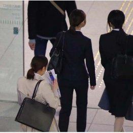 就活スタート(C)日刊ゲンダイ
