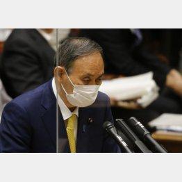 菅義偉総理大臣(C)日刊ゲンダイ