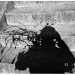 <41>この写真は死に向かっている妻に会いに行く階段なんだ