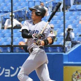 神奈川大会は東海大相模V率85% 古巣の横浜は2年後に勝負
