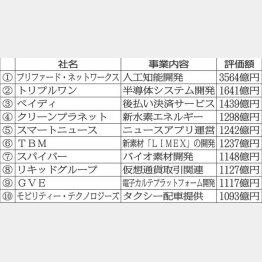 日本のユニコーン企業10社(C)日刊ゲンダイ