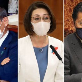 (左から)菅首相、三原じゅん子厚労副大臣、平井卓也デジタル改革担当相