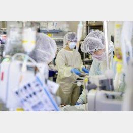 最も理想的な抗体、医療機関の強い味方になるか(C)共同通信社