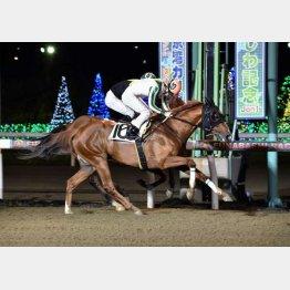 前開催の第2戦は山中騎手が勝利(提供)千葉県競馬組合