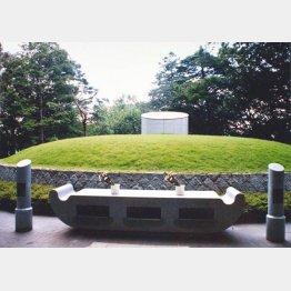 小平霊園の共同墓地(C)日刊ゲンダイ