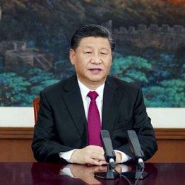 G7が包囲しても…欧米企業の中国への投資は止まらない