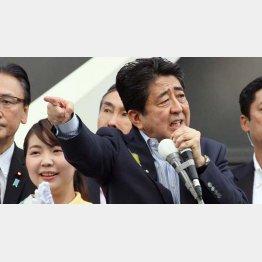 2017年、前回の都議選で「こんな人たちに!」(安倍前首相)/(C)日刊ゲンダイ